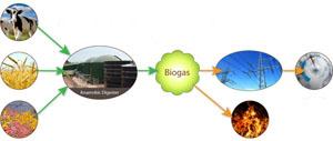 Методика переработки органических отходов