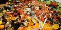 пищевые отходы в общепите