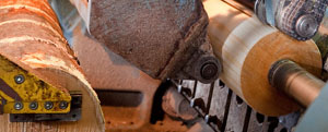 Изготовление и обработка шпона