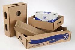 Процесс изготовления картона при помощи оборудования